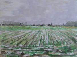 Weißer Kalender 2009